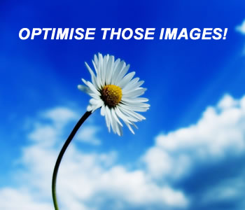 Optimise Images for SEO