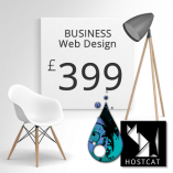 Business Web Design Package