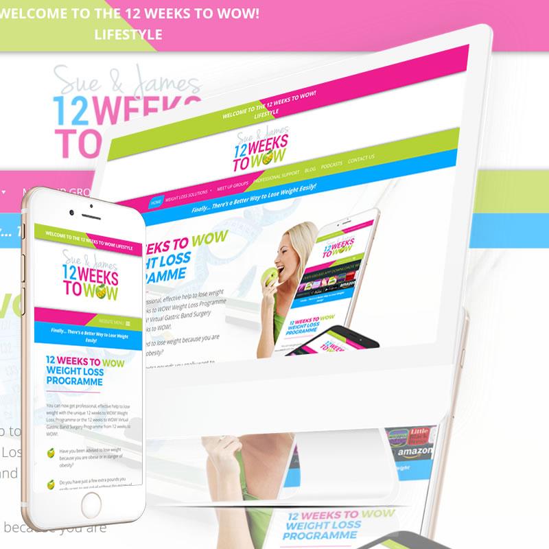 12 Weeks to Wow Website