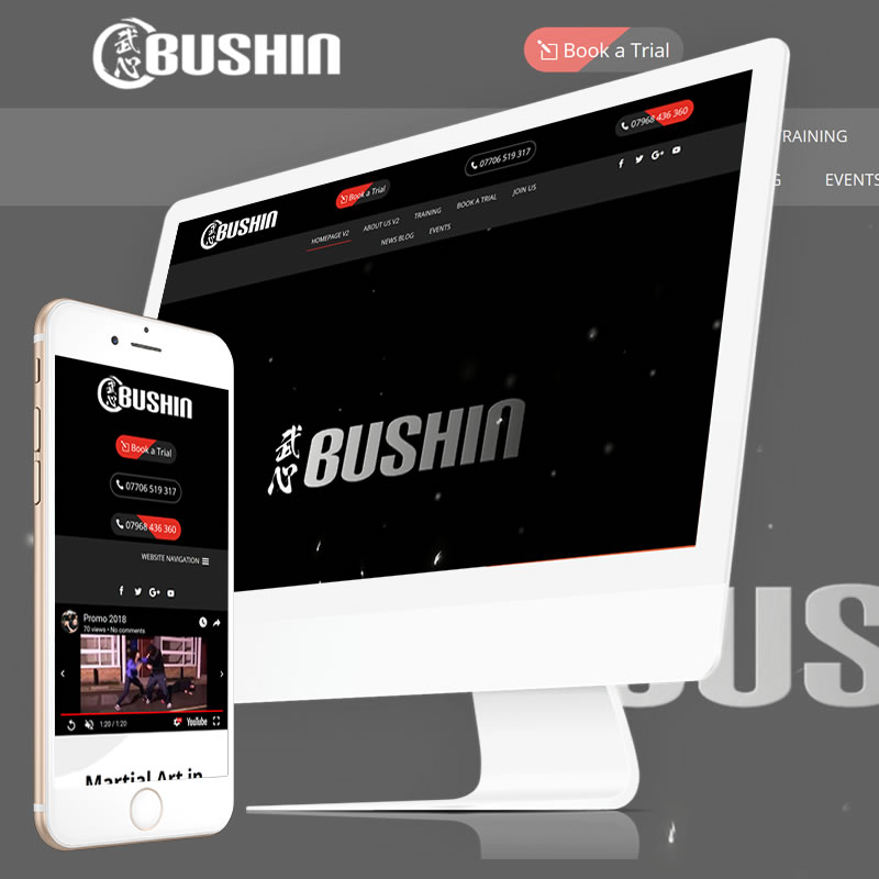 Bushin Martial Arts London Website