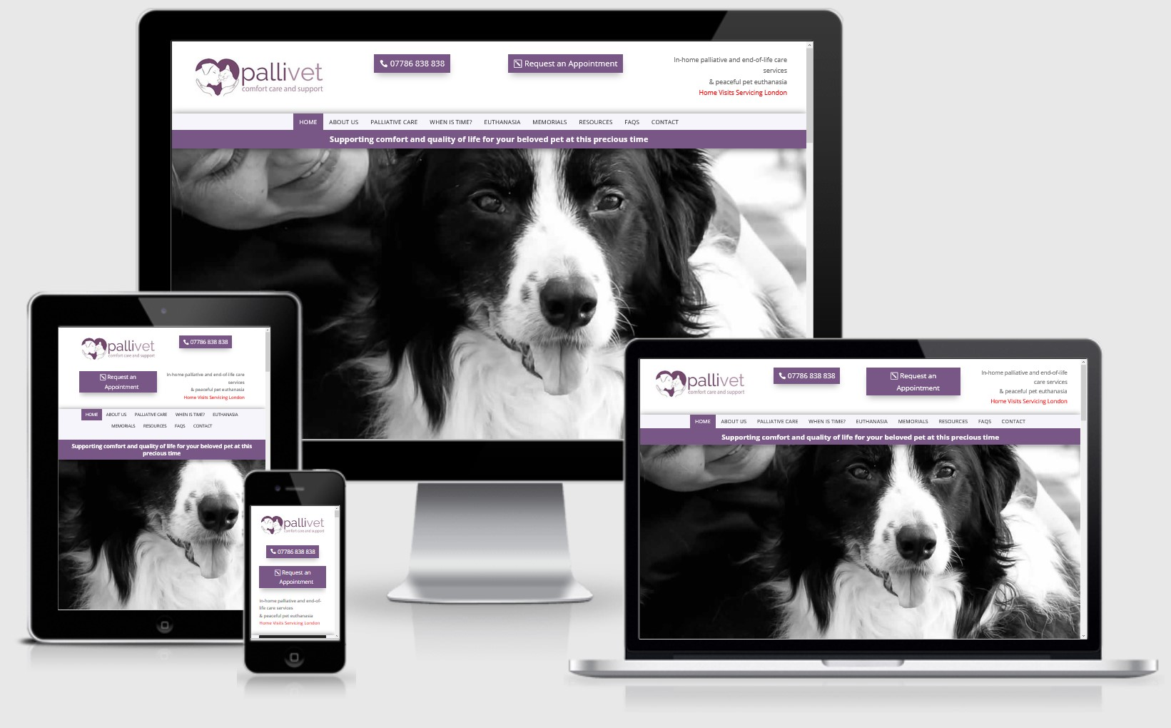 Pallivets London Website