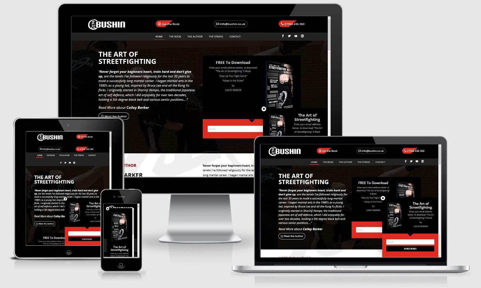 Learn to Streetfight in London Website