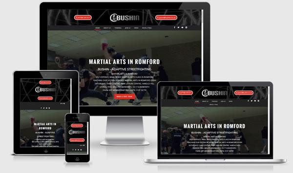 Bushin Martial Arts Romford Website